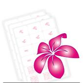 Blumen & Blütenblätter