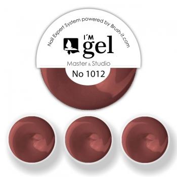 I'M gel EXPERT: Color Gel No. 1012