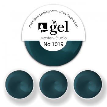 I'M gel EXPERT: Color Gel No. 1019