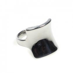 Edelstahl Ring R003