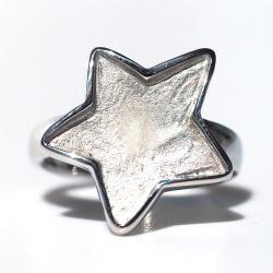 Edelstahl Ring R151