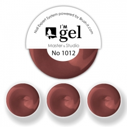 I'M gel EXPERT: Color Gel No. 1012