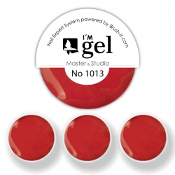 I'M gel EXPERT: Color Gel No. 1013