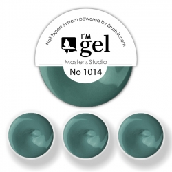 I'M gel EXPERT: Color Gel No. 1014