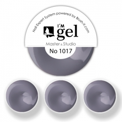 I'M gel EXPERT: Color Gel No. 1017