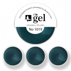 I'M gel EXPERT: Color Gel No. 1019