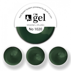 I'M gel EXPERT: Color Gel No. 1020