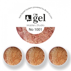 I'M gel EXPERT: Color Gel No. 1001