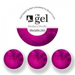 I'M gel EXPERT: Color Gel Metallic No. 260