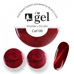 I'M gel EXPERT: Magnet Gel Cat Eye  No. 100