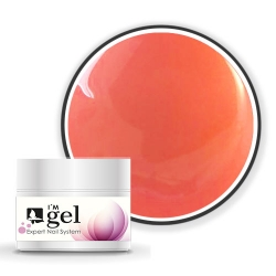 I'M gel EXPERT: Color Gel No. 1040