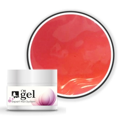 I'M gel EXPERT: Color Gel No. 186